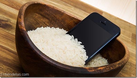 Haushaltstipp_Handy_Reis